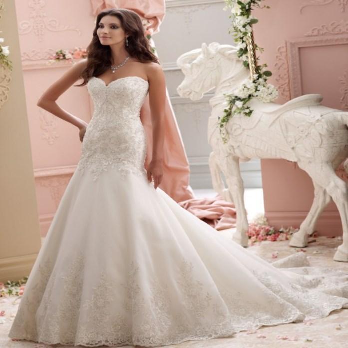 David Bridal Bridesmaid Dresses Plus Size: David Bridal Plus Size Wedding Dresses