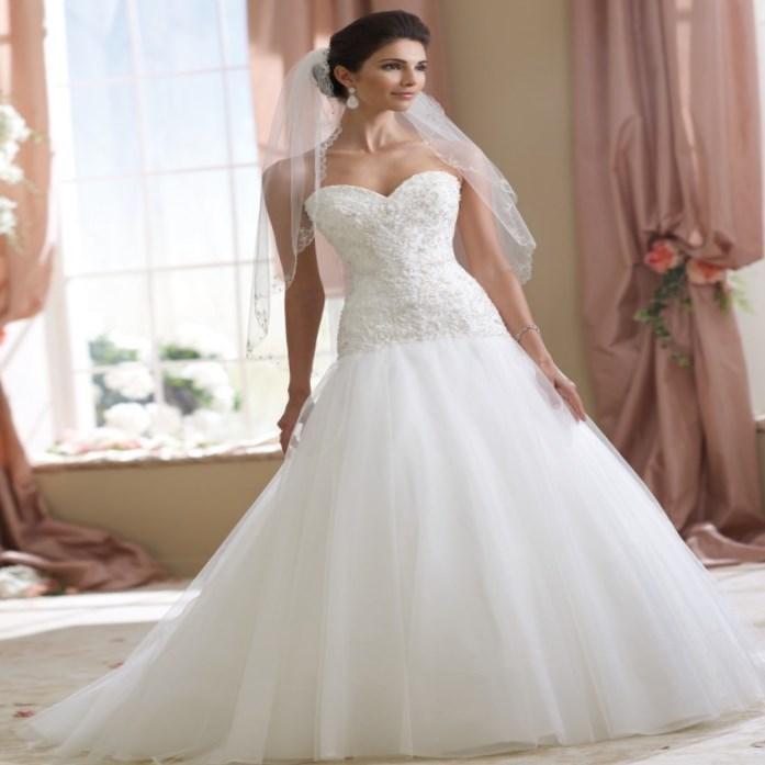 David S Bridal Plus Size Wedding Gowns: David Bridal Plus Size Wedding Dresses