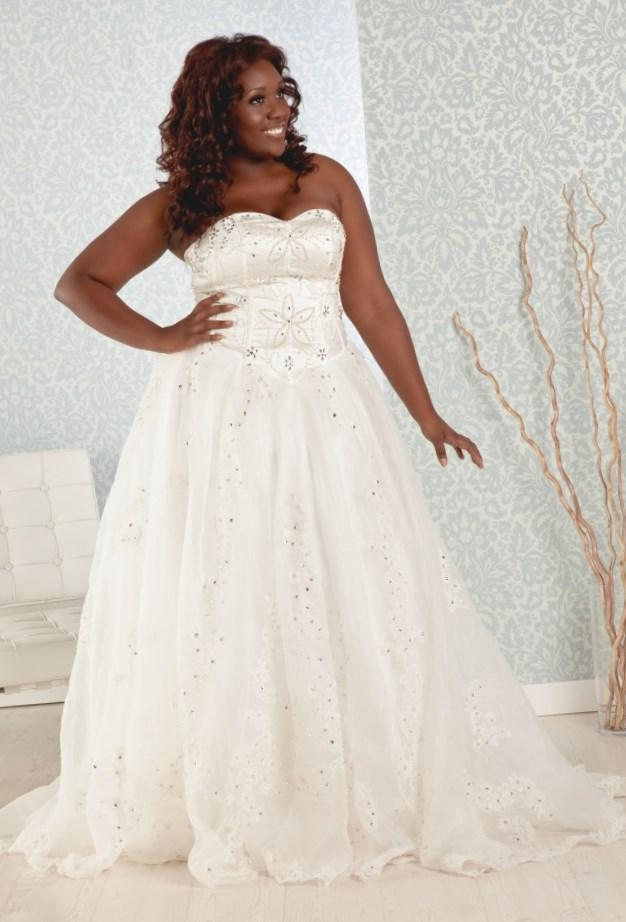 Plus size empire waist wedding dresses for Cheap simple plus size wedding dresses