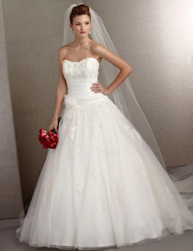 Plus size wedding dresses under 100 dollars pluslookeu for Plus size wedding gowns under 100
