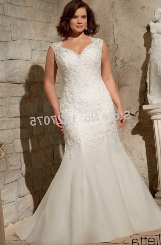 Modest Lace Long Sleeve Wedding Dresses Plus Size