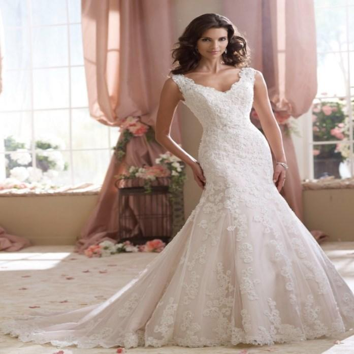 Davids Bridal Plus Size Wedding Dresses: David Bridal Plus Size Wedding Dresses